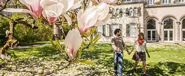 Spaziergang im Magnoliengarten